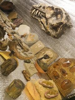 MUSEO DE RESINA5